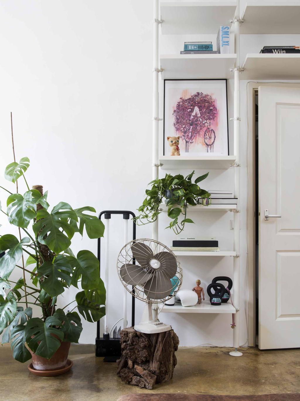 Witte kast met planten