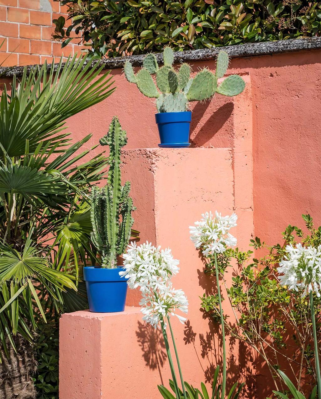 vtwonen special zomerhuizen 07-2021 | blauwe bloempotten met cactussen