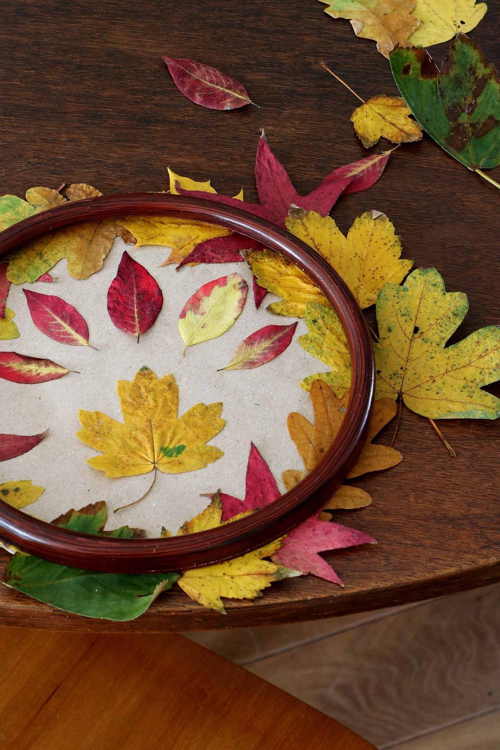 Ronde lijst herfstbladeren