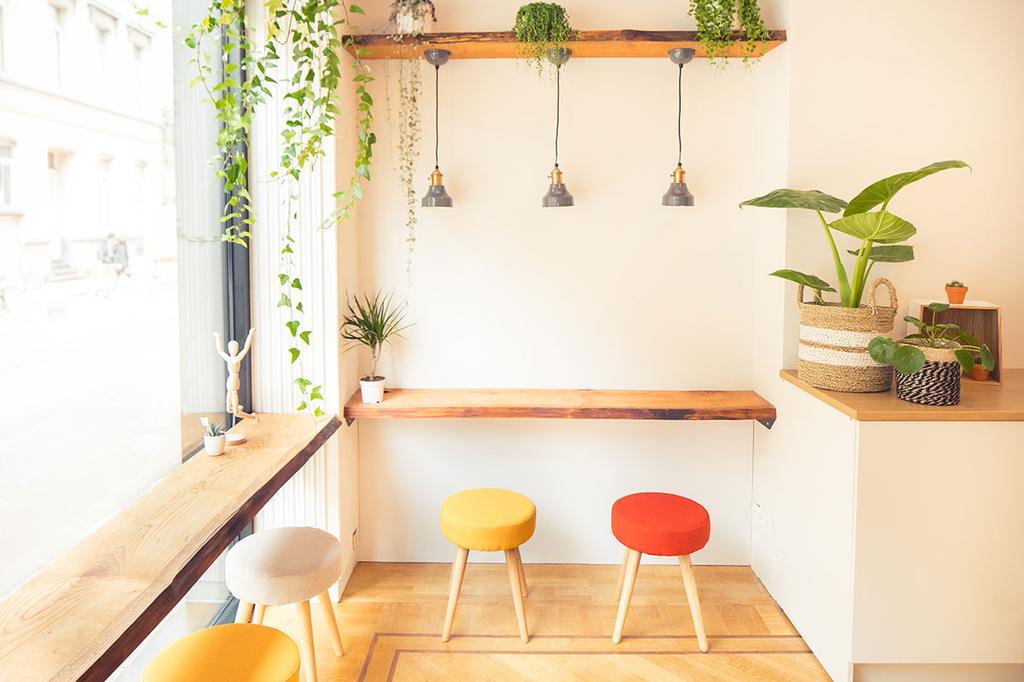 Een kleine, lichte zaak met houten bar en kleurrijke krukjes en planten.