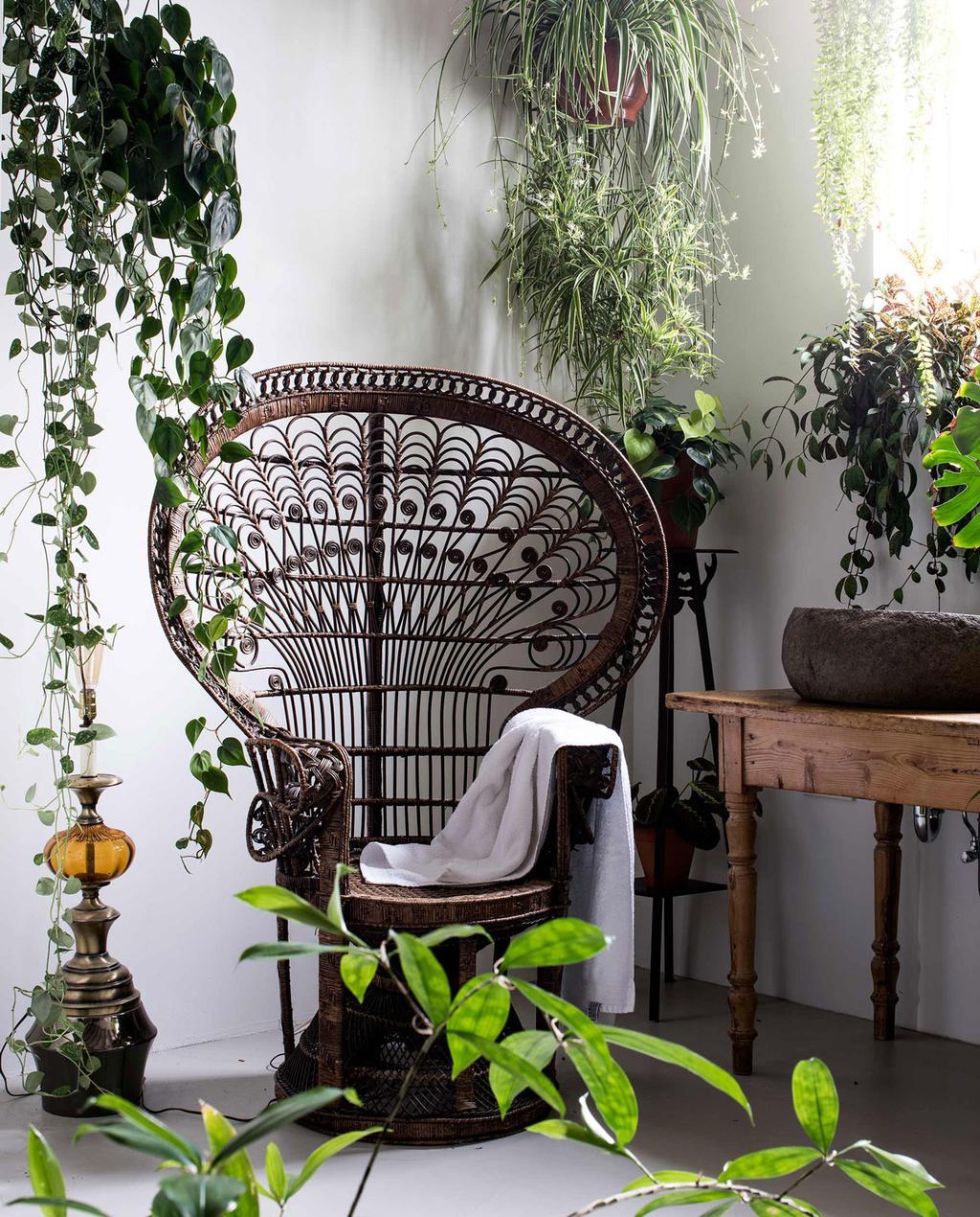 rotan stoel in bohemian interieur omringd door hangplanten en kamerplanten