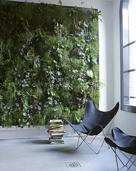 groen aan de muur
