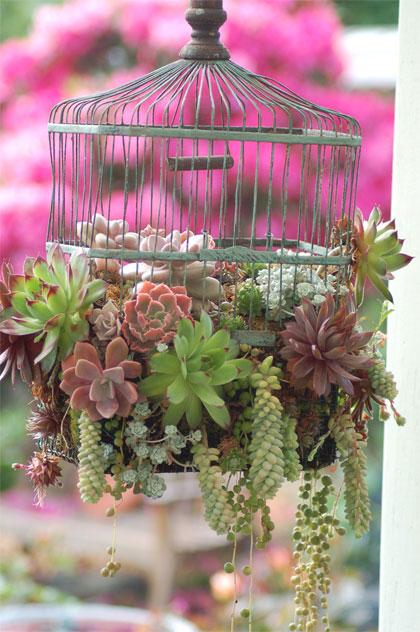 vogelkooi-plantenbak