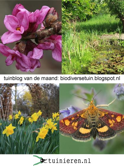 biodiverse tuin