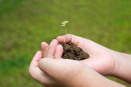 tuinieren-met-kids