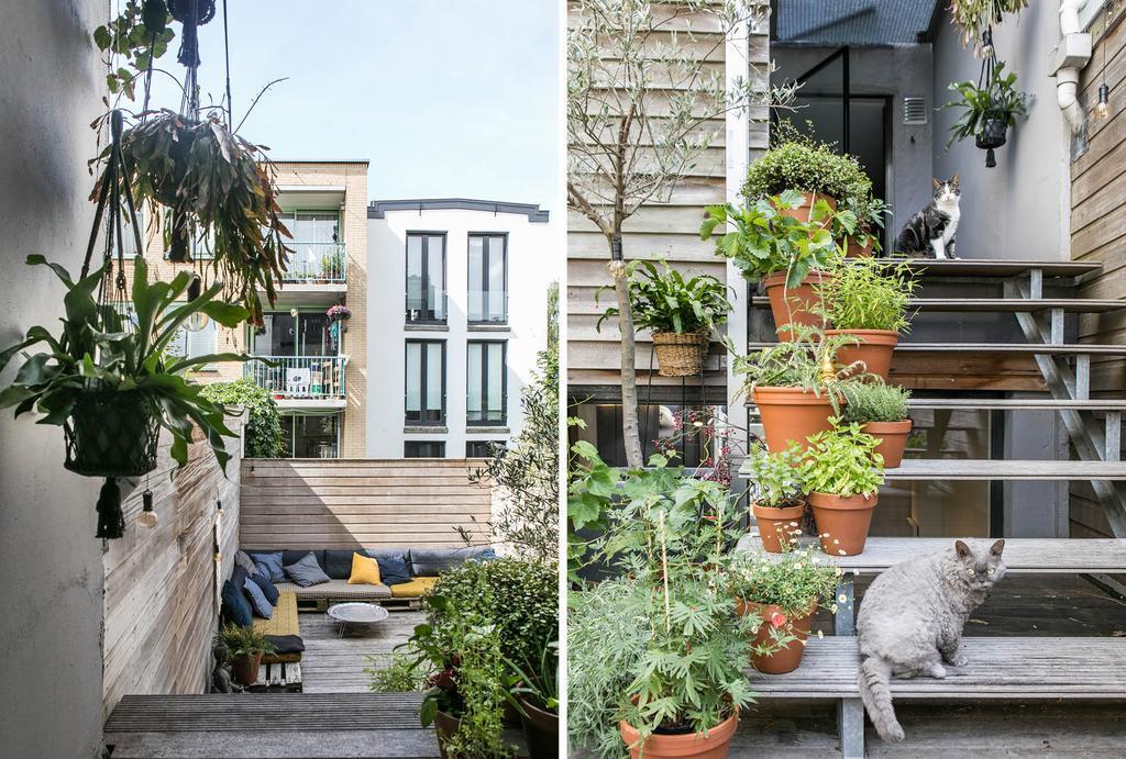 Dakterras met planten op de trap